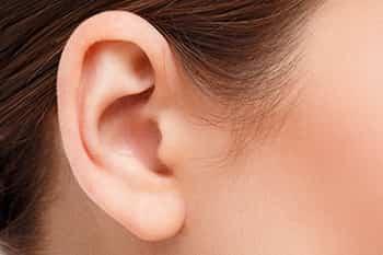 Hyaluronsäure Ohr